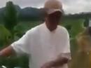 """Tạm giữ hình sự ông già 79 tuổi đưa bé gái 8 tuổi ra cánh đồng """"giở trò đồi bại"""""""