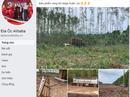 """Đồng Nai cảnh báo về """"dự án"""" của Alibaba ở huyện Xuân Lộc"""