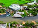 """Một nhà máy đường ở Hậu Giang là """"thủ phạm"""" khiến nước đen, cá chết hàng loạt"""