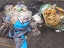 """TP HCM: Chính quyền phải dọn nếu rác """"ngự"""" trên đất công"""
