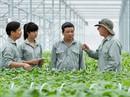 Việt Nam sẽ thiếu lao động có trình độ cao cho nông nghiệp 4.0