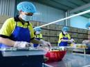 Vốn đầu tư từ Trung Quốc vào Việt Nam tăng đột biến