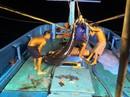 Một triệu lá cờ Tổ quốc cùng ngư dân bám biển: Trân quý từng tấm lòng hướng đến ngư dân!