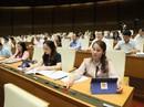 Trình Quốc hội Luật sửa đổi Luật Đất đai vào năm 2020