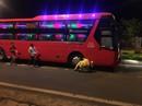 Chạy theo người thân qua đường trong đêm, cháu bé 5 tuổi bị xe khách tông tử vong