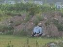 Nam thanh niên chết bất thường tựa lưng vào gò đất