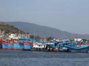 Một triệu lá cờ Tổ quốc cùng ngư dân bám biển: Khơi dậy lòng yêu nước, hướng về biển, đảo