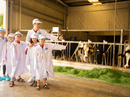"""""""Resort"""" bò sữa đón những vị khách nhí"""