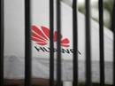 An ninh quốc gia Mỹ bị đe dọa vì... cấm Huawei?