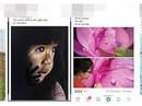 Sôi động chợ tranh online