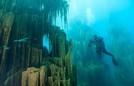 Lặn ngắm khu rừng trong lòng hồ Kaindy