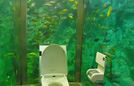Nhà vệ sinh 270.000 USD được thiết kế như thủy cung