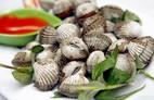 Bất ngờ: Ăn sò huyết chữa ít nhất 9 loại bệnh!