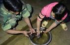 Đặc sản chuột ăn hạt sâm đãi khách quý ở núi Ngọc Linh