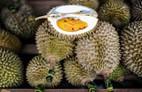 5 điều ít biết về 'vua trái cây' sầu riêng