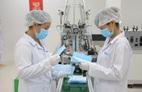 Doanh nghiệp bán khẩu trang y tế Ecom Net bình ổn thị trường