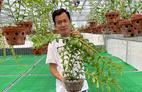 Ông chủ vườn lan Phạm Minh Minh nổi tiếng, được yêu mến đến không ngờ