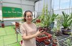 Bà chủ vườn lan trăm loài Thùy Linh chia sẻ bí quyết trồng lan