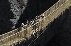 Người Peru dệt lại cây cầu treo 500 năm tuổi