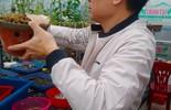 Ông chủ vườn lan 7X Mạnh Hùng chia sẻ kinh nghiệm trồng hoa lan