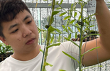 Ông chủ vườn lan Huỳnh Vũ: Từ chàng trai trông xe đến gia tài hoa lan giá trị