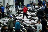 Vì sao chợ cá lớn nhất thế giới ở Nhật gây tranh cãi khi dời địa điểm?