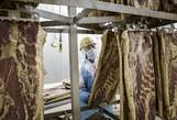Các nước thay chân Mỹ bán thịt heo sang Trung Quốc