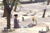 Thêm chuyện ly kỳ từ nghĩa địa cá Ông ở Phước Hải