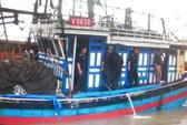 Tàu gặp nạn ngoài khơi, 6 ngư dân được cứu sống