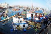 """Động đất Chile làm tăng lo ngại về """"vành đai lửa"""