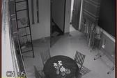 Vụ phát hiện rắn trong máy giặt: người giúp việc được camera minh oan