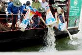 Thả hàng chục ngàn con cá giống xuống hồ Trị An