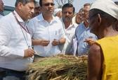 Ấn Độ: Tự tử vì mùa màng thiệt hại