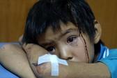 Động đất ở Trung Quốc: Tựa như bãi chiến trường!