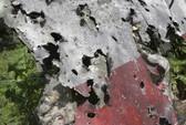 """MH17 trúng """"vật thể tốc độ cao"""""""