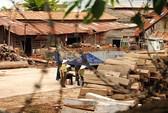 Vụ phong tỏa 3 xưởng gỗ ở Đắk Lắk: Liên quan đường dây buôn gỗ lậu