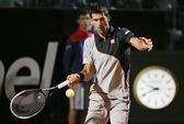 Djokovic hạ Ferrer, Nadal vượt qua Murray ở tứ kết