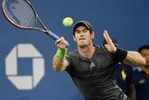 Andy Murray đối đầu Tommy Robredo ở chung kết