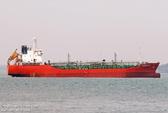 Tìm kiếm tàu Sunrise-689 mất liên lạc bí ẩn cùng 18 thuyền viên