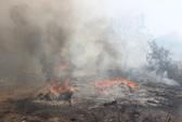 Cháy lớn tại bãi rác, 5 nhà dân bị thiêu rụi