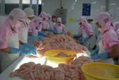 Một DN top 10 xuất khẩu thủy sản tuyên bố đóng cửa