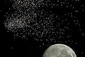 Mãn nhãn với siêu mặt trăng, Việt Nam sắp đón mưa sao băng