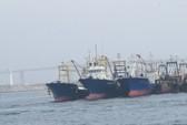 Đại gia vay ngàn tỉ mua tàu cá: Xin ưu đãi quá đà?