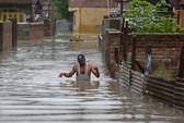 Ấn Độ: Xe đám cưới rơi xuống sông, 50 người chết