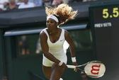 Cơ hội lịch sử của Serena Williams tại giải Mỹ mở rộng 2014