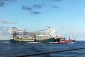 Được tàu hải cảnh yểm hộ, tàu cá Trung Quốc manh động hơn
