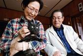 Mèo đoàn tụ với chủ sau 3 năm mất tích