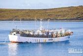 Tàu cá Đài Loan cùng 2 người Việt mất tích gần Argentina