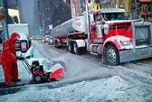Đông Bắc Mỹ tê liệt vì bão tuyết