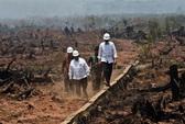 Indonesia cầu cứu, Malaysia điều máy bay sang dập lửa